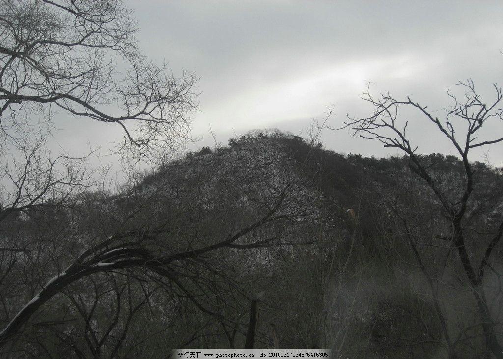 深山老林 高原 山 树枝 树干 野外的风景 冬天景色 摄影图 自然风景