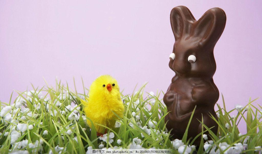 兔子 小兔子 小鸡 陶瓷 橡皮泥 家畜 宠物 可爱 小动物 复活节
