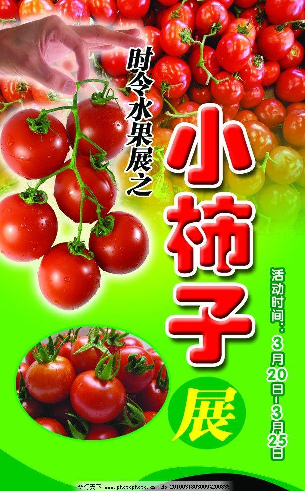 柿子 西红柿 蕃茄 圣女果 蔬菜 海报设计 广告设计模板 源文件 72dpi