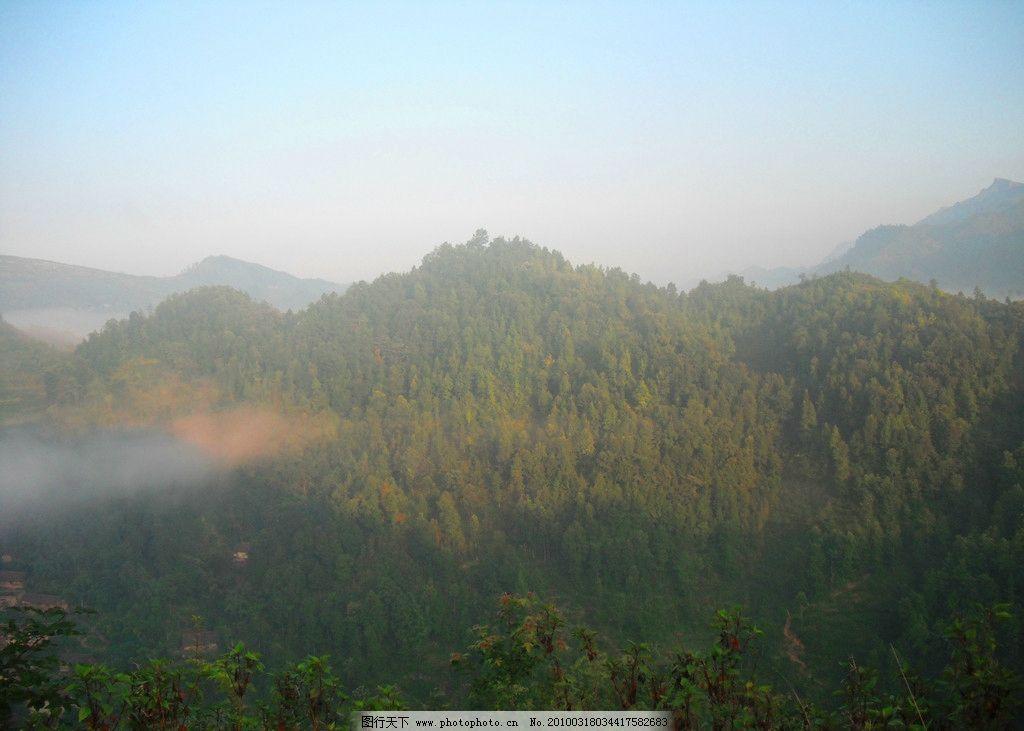 摄影图库 自然景观 山水风景  江南清晨风景 江南风景 绿色 春天风景
