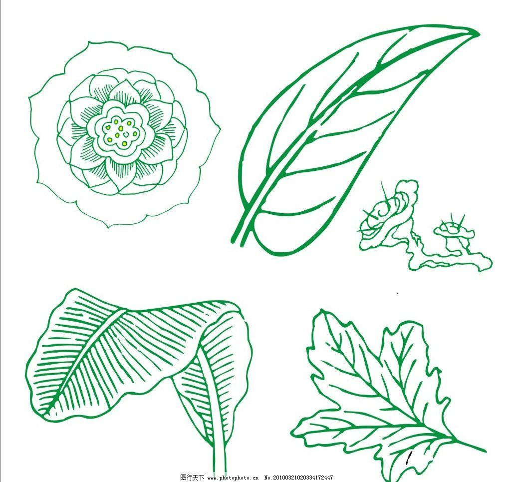 叶子 树叶 花 荷花 八焦叶 花纹素材 花纹花边 底纹边框 矢量 cdr