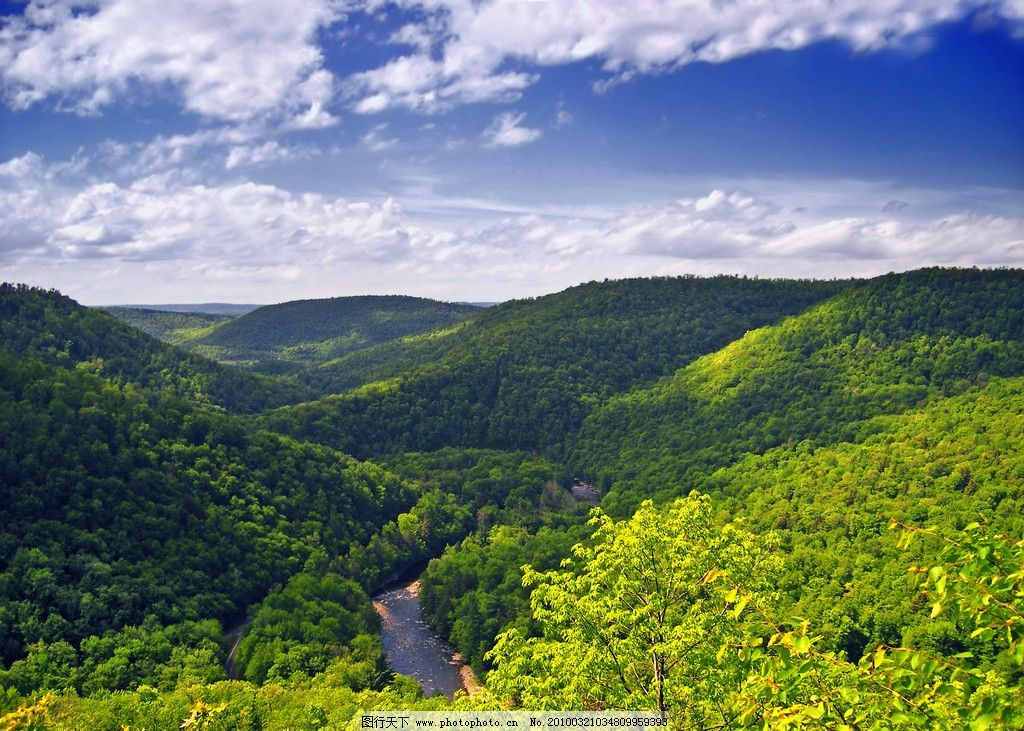 蓝天白云森林图片
