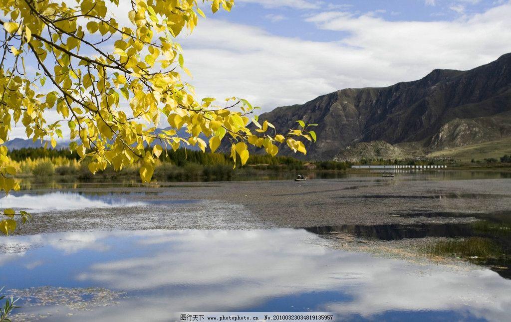 西藏风光 摄影图库 自然景观 自然风景 西藏 高原风景 蓝天 白云 树叶
