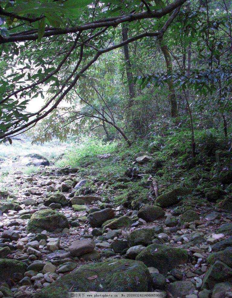 张家界 风景 山 山塔 雾景 美景 山水风景 著名风景 中国自然风景