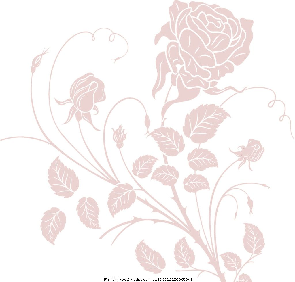 玫瑰花 洋红色 叶子 花边花纹 底纹边框 设计 300dpi jpg