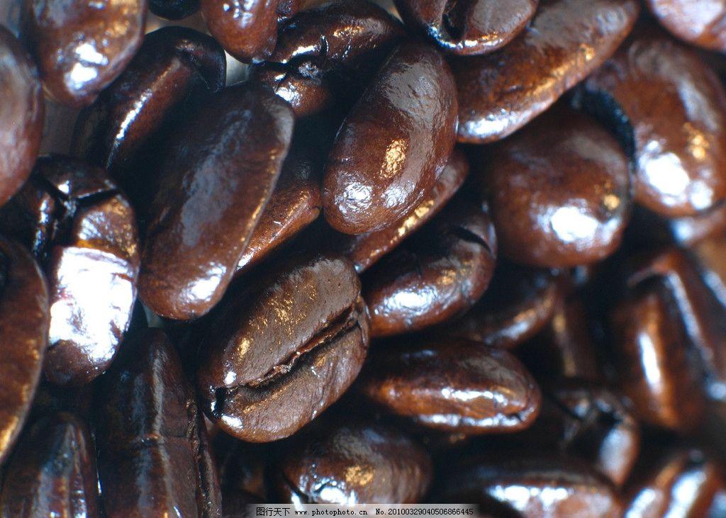 有光泽的咖啡豆特写
